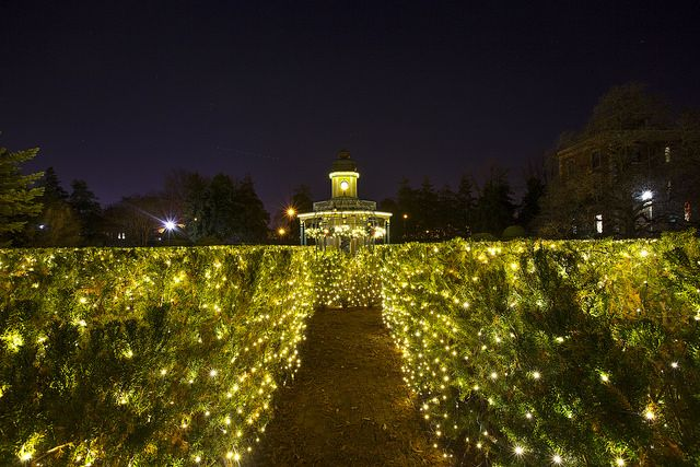 9 Botanical Gardens That Are More Beautiful at Night in