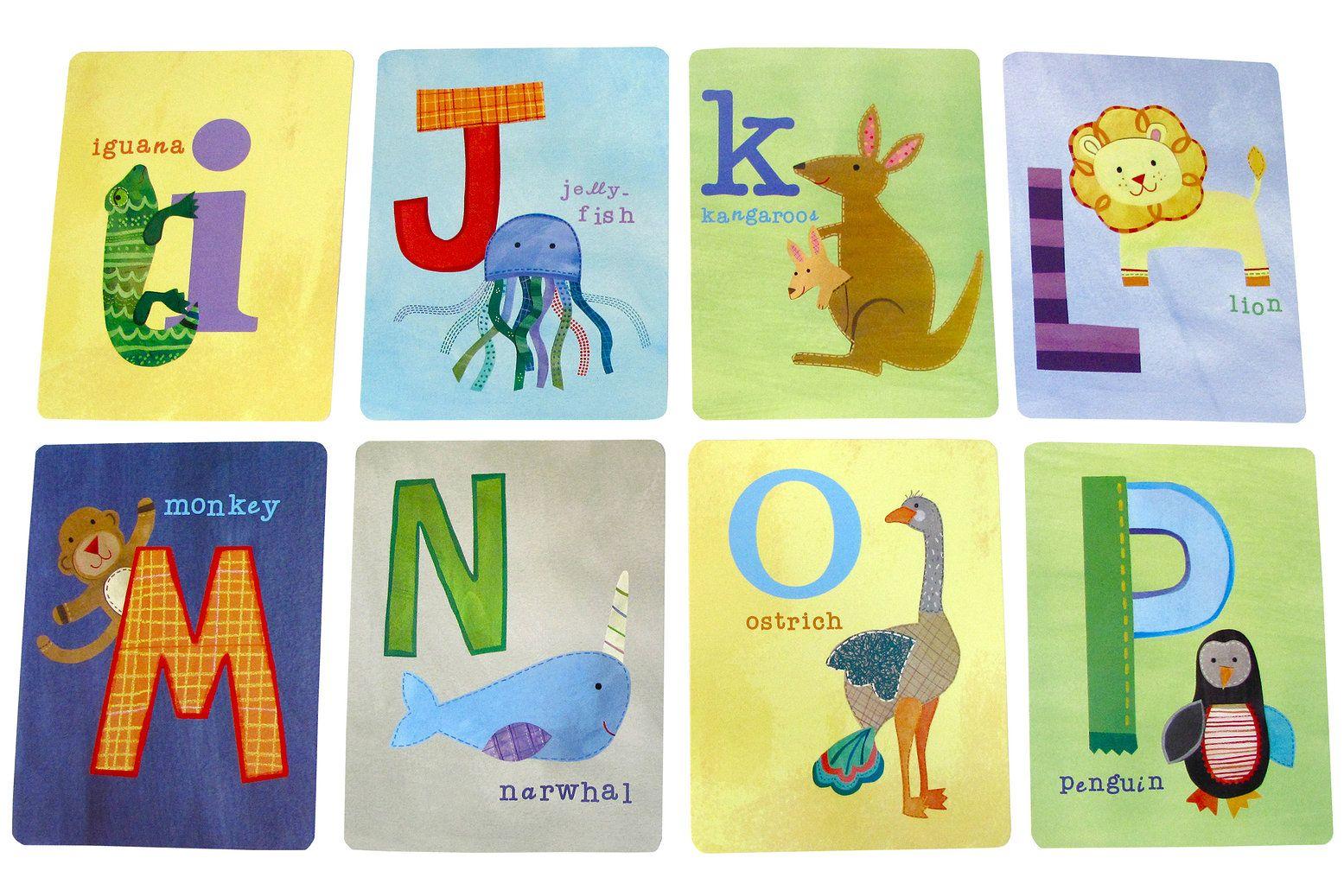 Unique Educational Toys : Flash card set animal alphabet by jill mcdonald cr