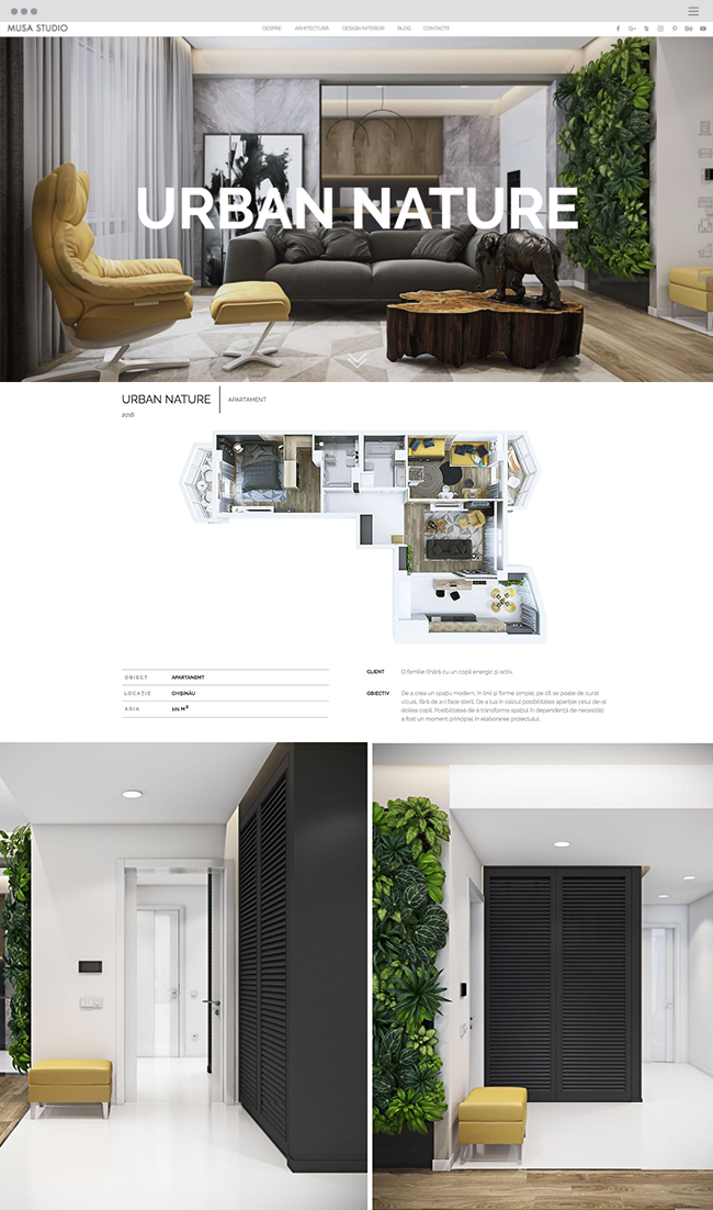 Musa Studio | Interior Design Studio