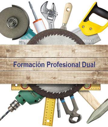 Una de las estrategias del gobierno para fomentar la empleabilidad de los jóvenes y facilitar el acceso al mercado laboral es impulsar la Formación Profesional Dual.
