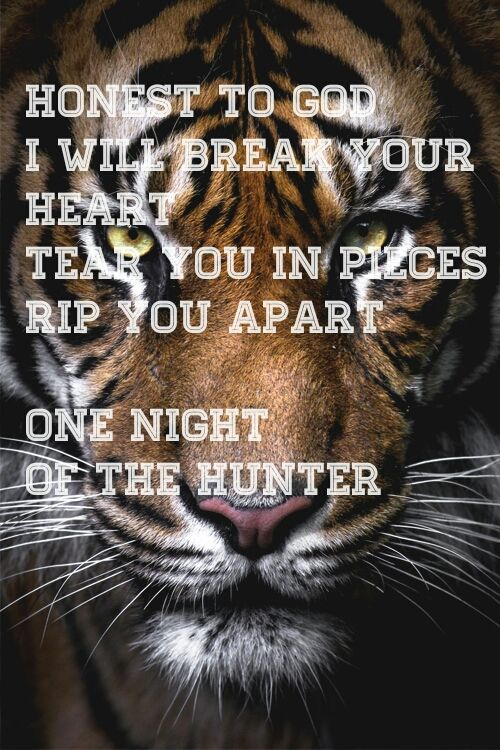 Music Is Life Night Of The Hunter 30 Seconds To Mars 30 Seconds To Mars Favorite Lyrics Band Quotes