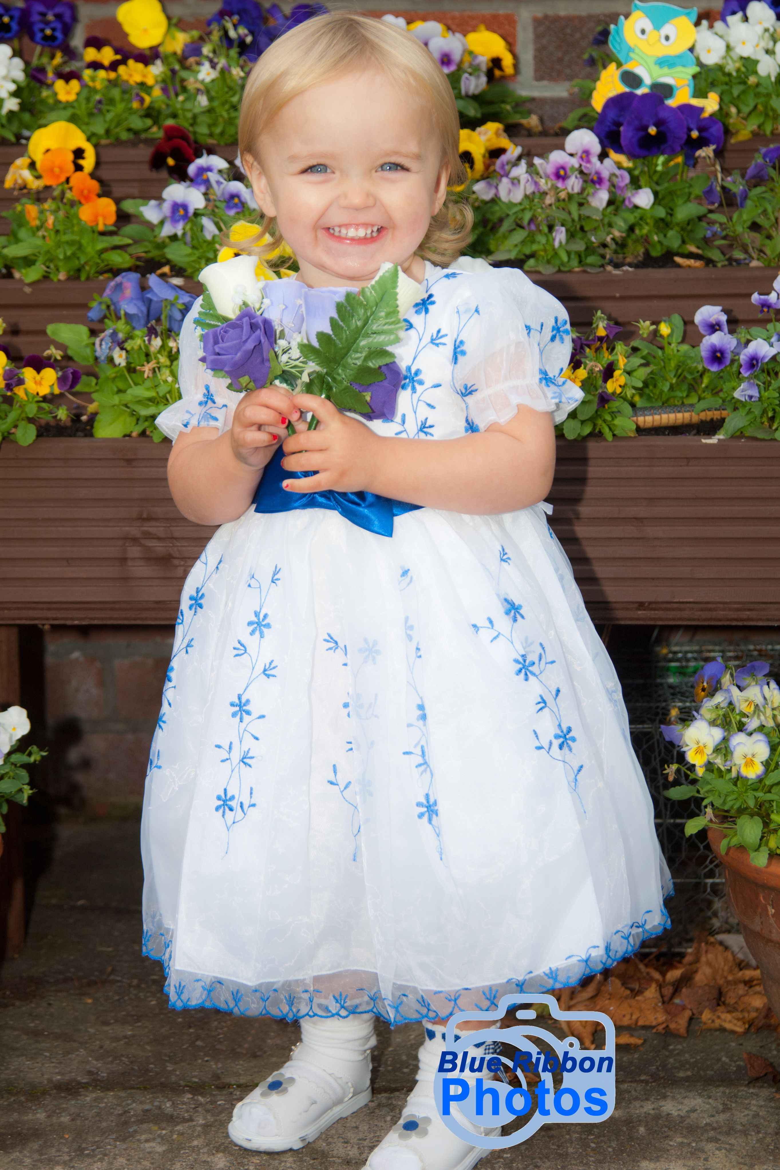 Young flower girl poses with the flowers blue ribbon photos