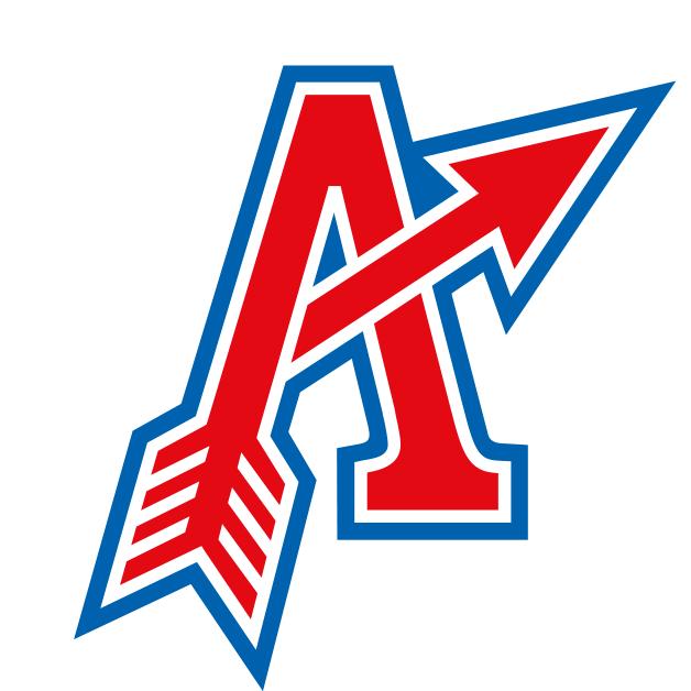 The Ostrava Arrows play in the Czech Republic's Extraliga I ...