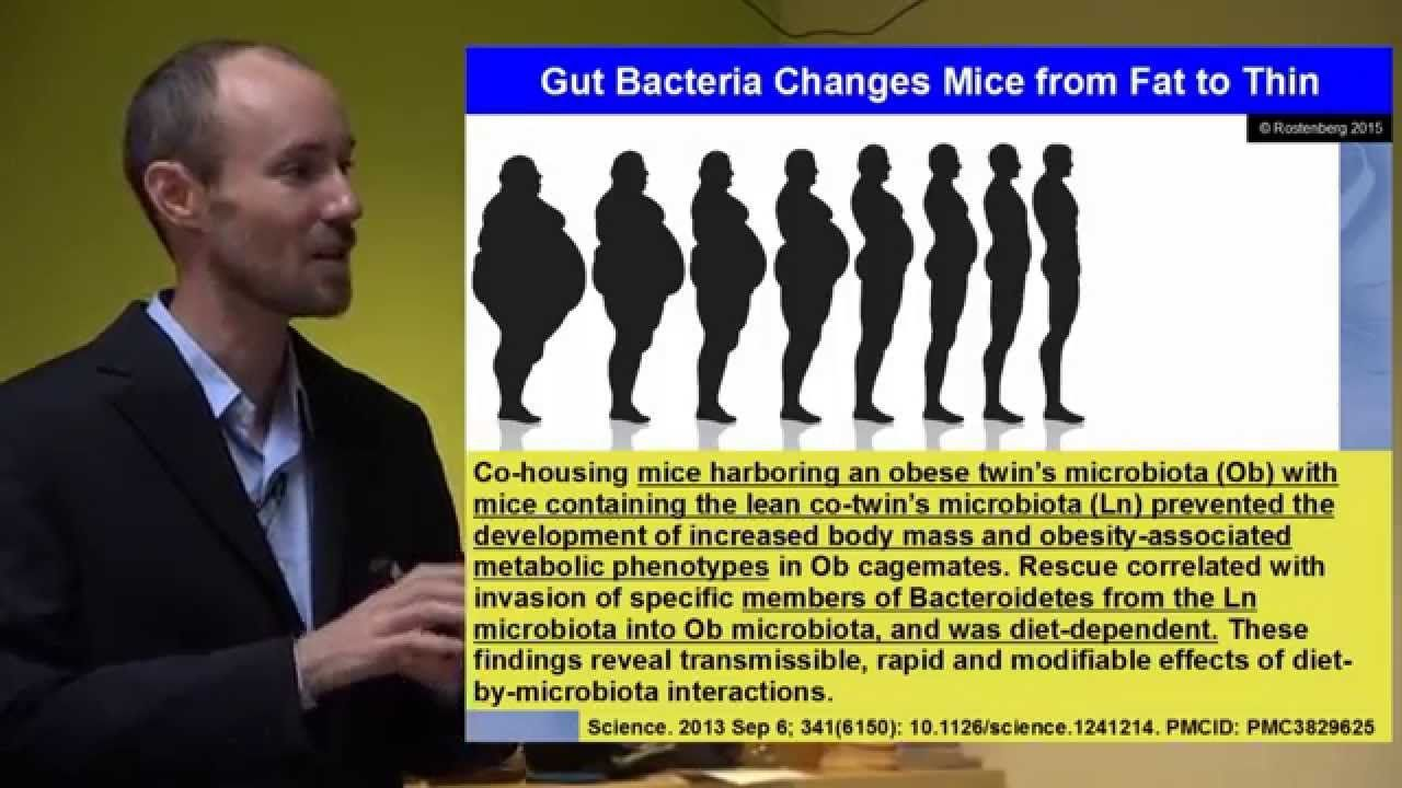 Leaky Gut, Leaky Brain: How Gut Problems Create Brain Problems. THIS ...