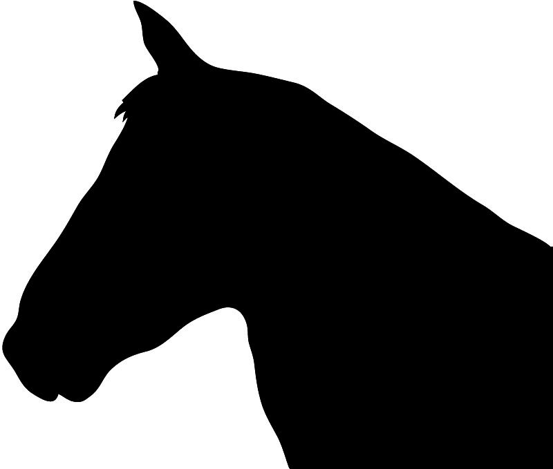 Horse Head Silhouette Patterns Horse Silhouette Animal Silhouette Silhouette