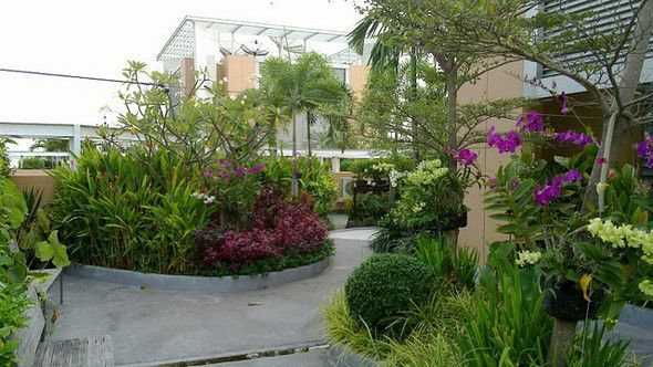 Cool roof garden barefootstyling Places and Spaces Pinterest