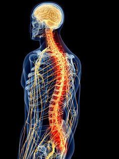 Weekly dose: Lyrica, the epilepsy drug that treats chronic nerve pain