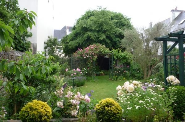 Jardin de ville rosier tilleul jardin inspiration for Jardin 300m2