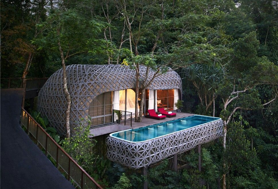Surprising Treehouse With Swimming Pool Amazing Treehouses Yurt Download Free Architecture Designs Scobabritishbridgeorg