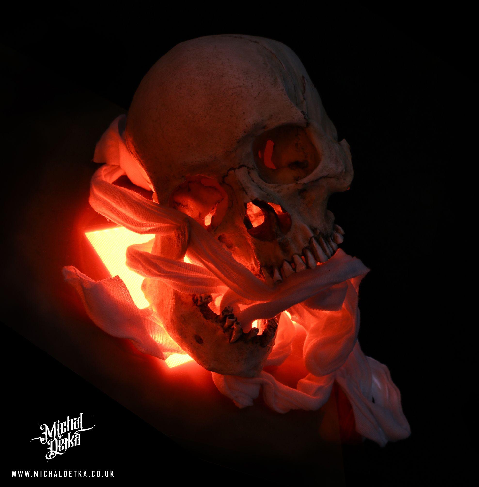 Skull Ref Light Skull Artwork Skull Reference Skull