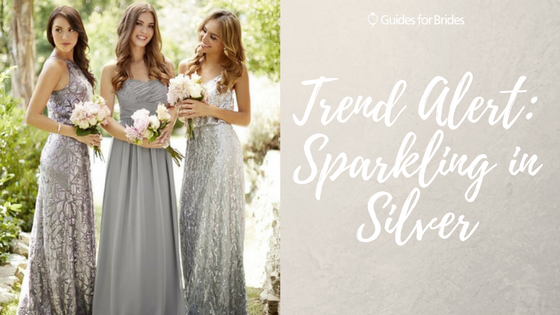 Sparkling In Silver Bridesmaid Dresses Silver Www