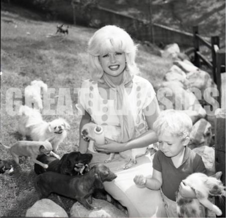 Jayne Mansfield And Dachshund Dachshund Lovers Dachshund Love