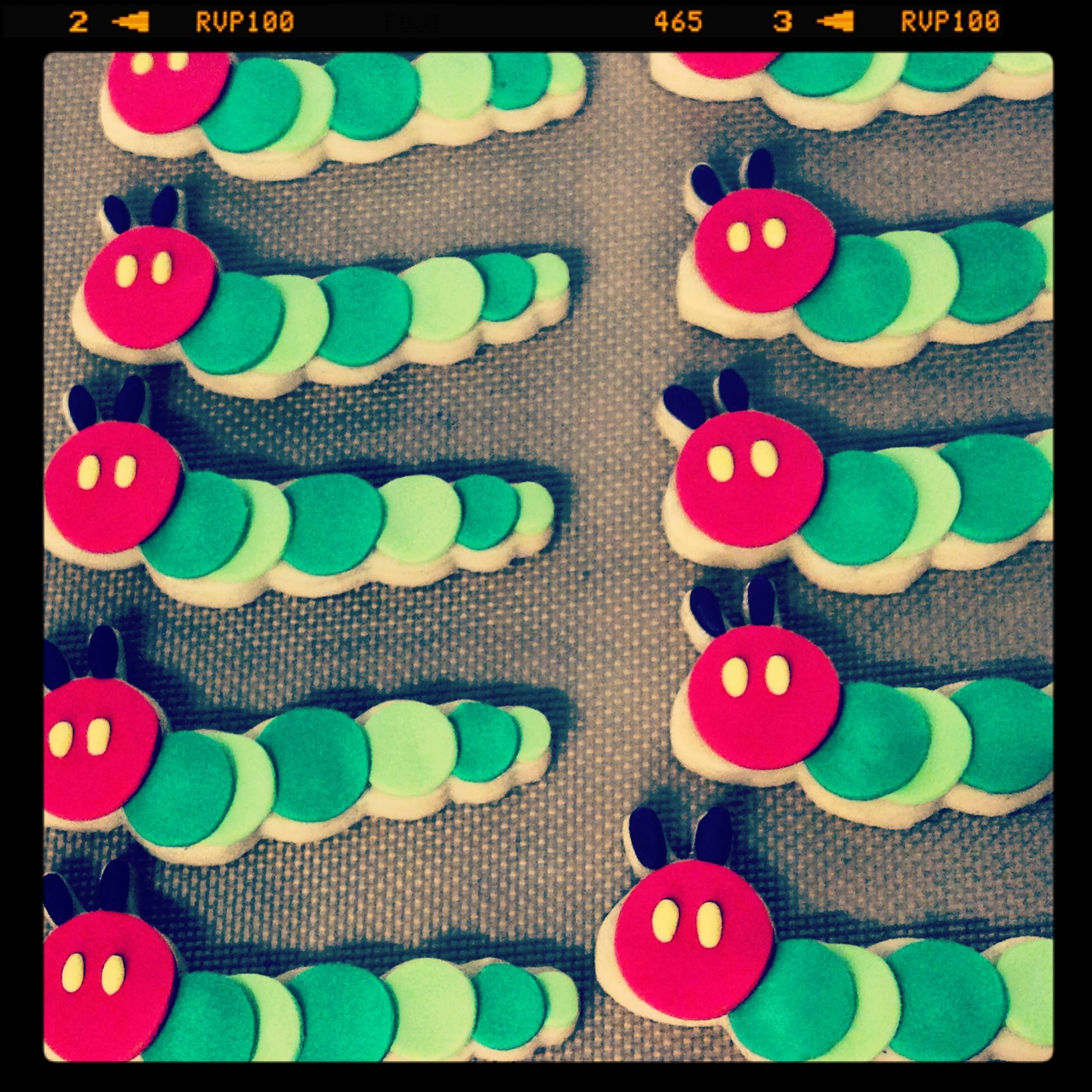 Hungry caterpillars by BYT