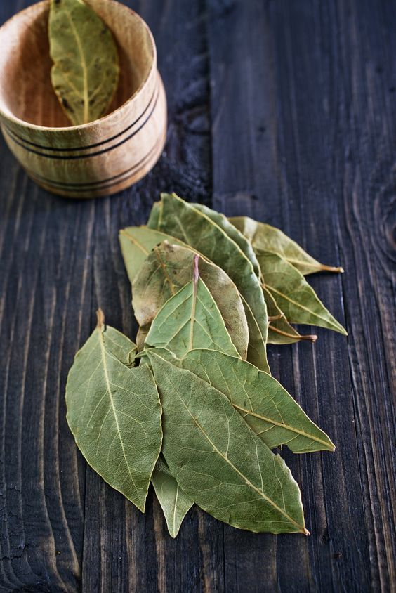 The Best Place to Store Bay Leaves Is Not in Your Spice Drawer — Tips from The Kitchn