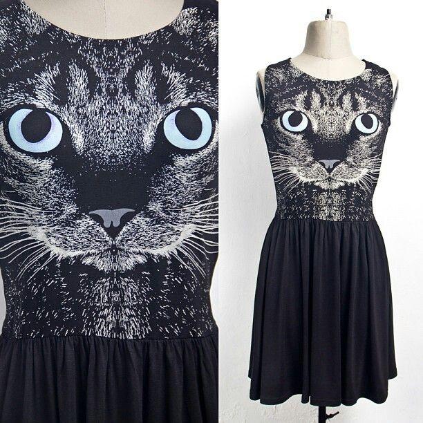 Drees gato :3