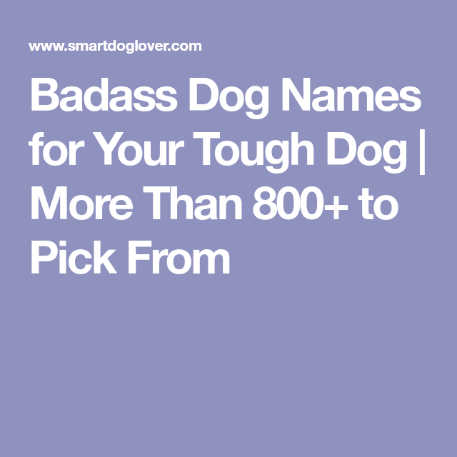 badass dog names for your tough dog