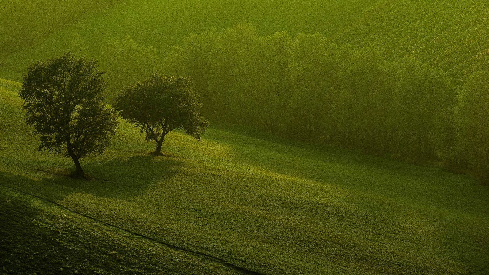 Green nature 3d hd wallpapers for your windows 8 places - Green nature wallpaper full hd ...