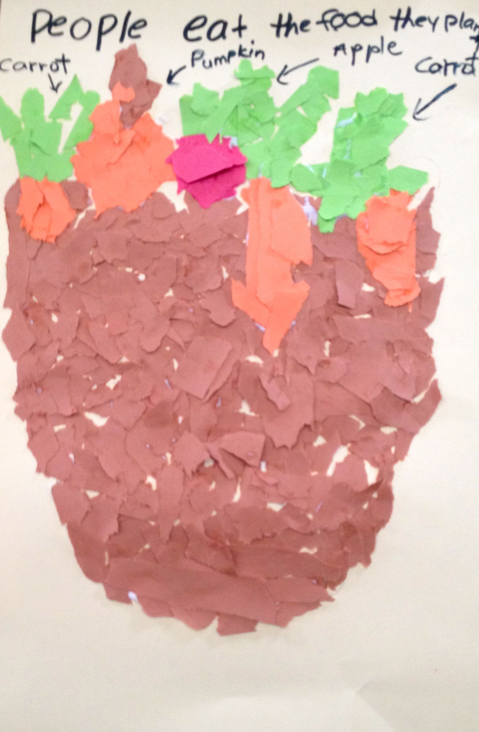 Week 5 Group 3 Using Tear Art To Recreate The Growth Of A Plant Tears Art Creative Activities Nonfiction Texts