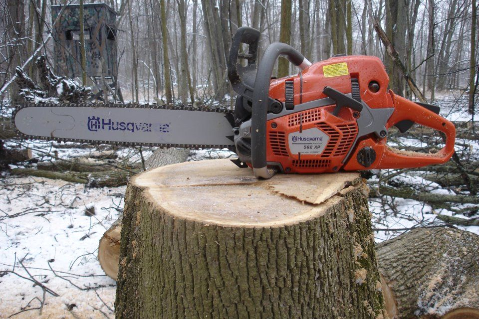 Husqvarna 562 XP #Logging #Chainsaw    I pinned a stihl chainsaw