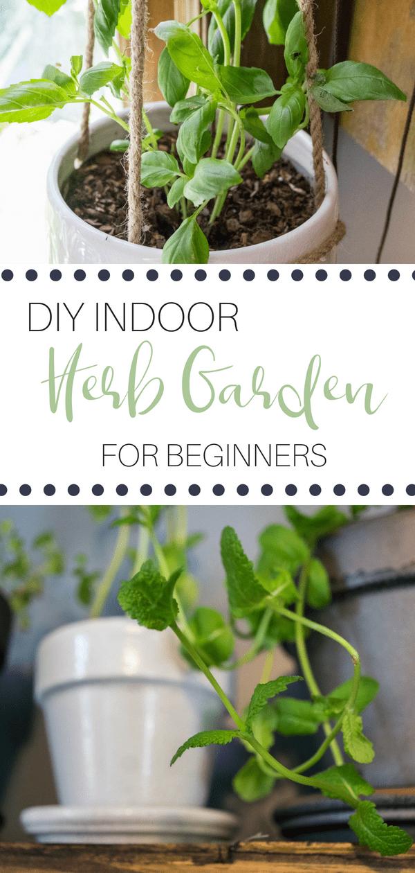 Indoor Herb Gardening For Beginners Gardening For Beginners Diy