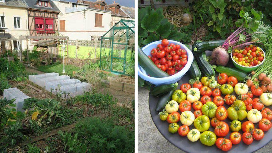 il cultive un jardin urbain et r colte 300 kg de l gumes cultiver la tomate en quantit. Black Bedroom Furniture Sets. Home Design Ideas