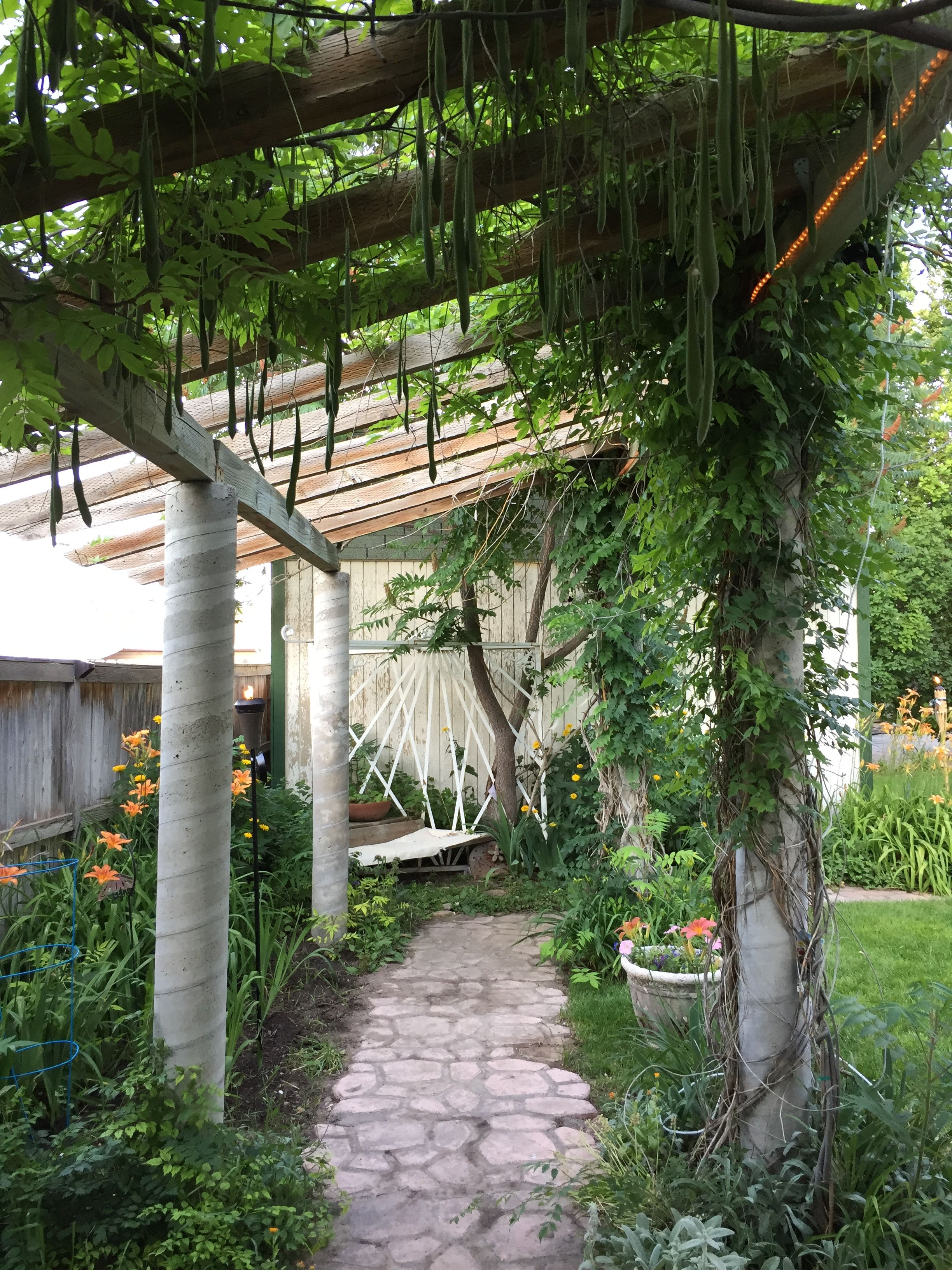 Another view of the pergola. The concrete posts looked like they had been poured using cardboard carpet tubes.