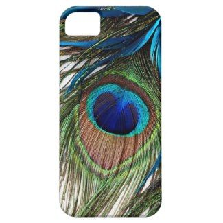 Peacock Feathers iPhone 5 Case by UniqueArtistGifts