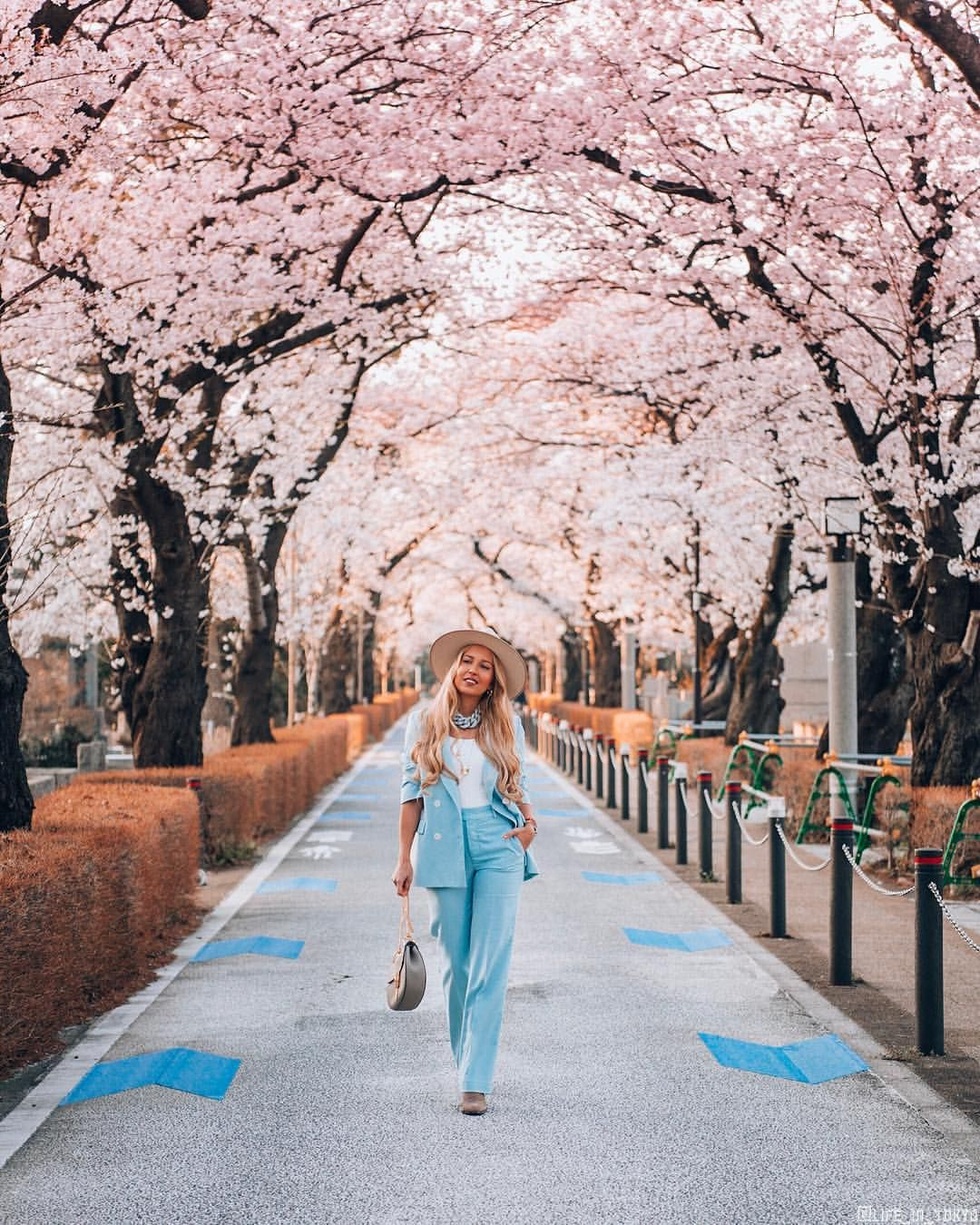 Kat Based In Japan Op Instagram When The Whole City Turns Pink This Year Japanese Gods Had Gone A Bit C Japan Photography Japan Travel Cherry Blossom Japan