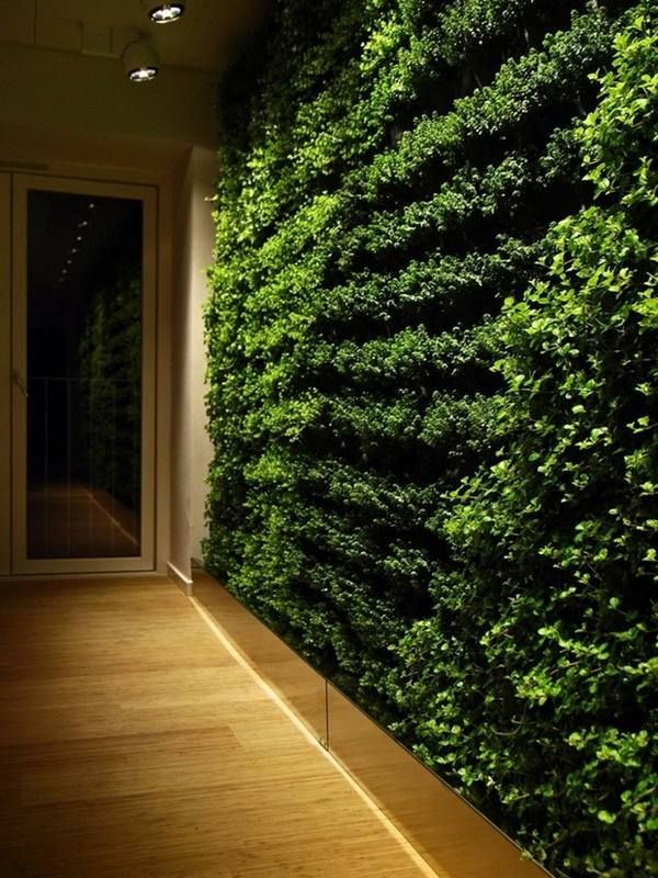 Wall Garden In The Interior The Freshness Of Nature In Our Homes