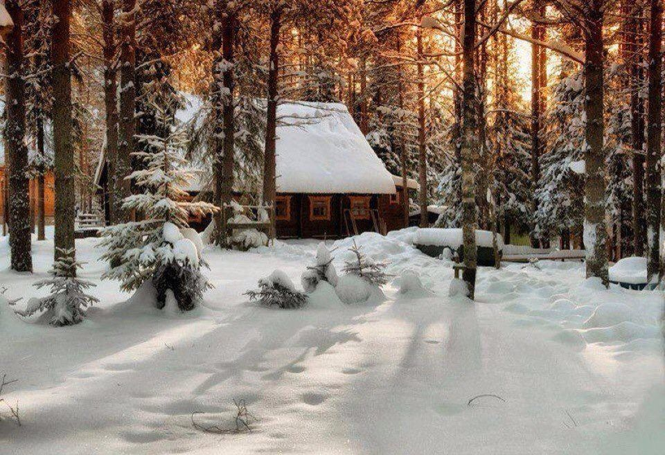 beautiful cozy winter cottage cabin in the woods On snowy cabin in the woods