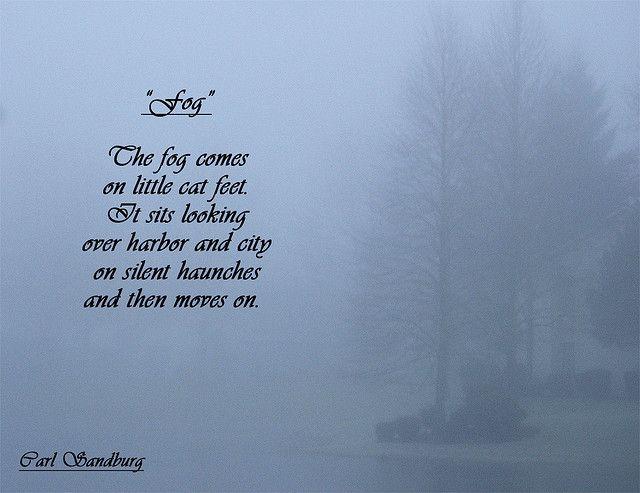 Poems, Writers, Poets, Carl