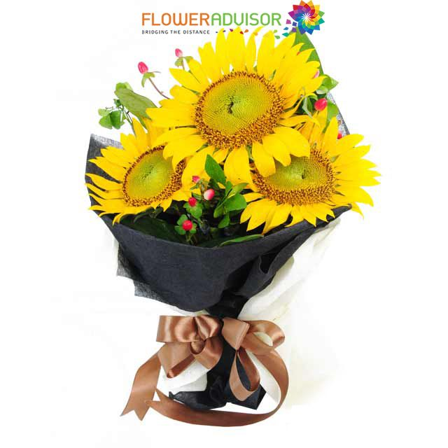 Symbolic Meanings Of The Sunflower Faith Longevity Healing