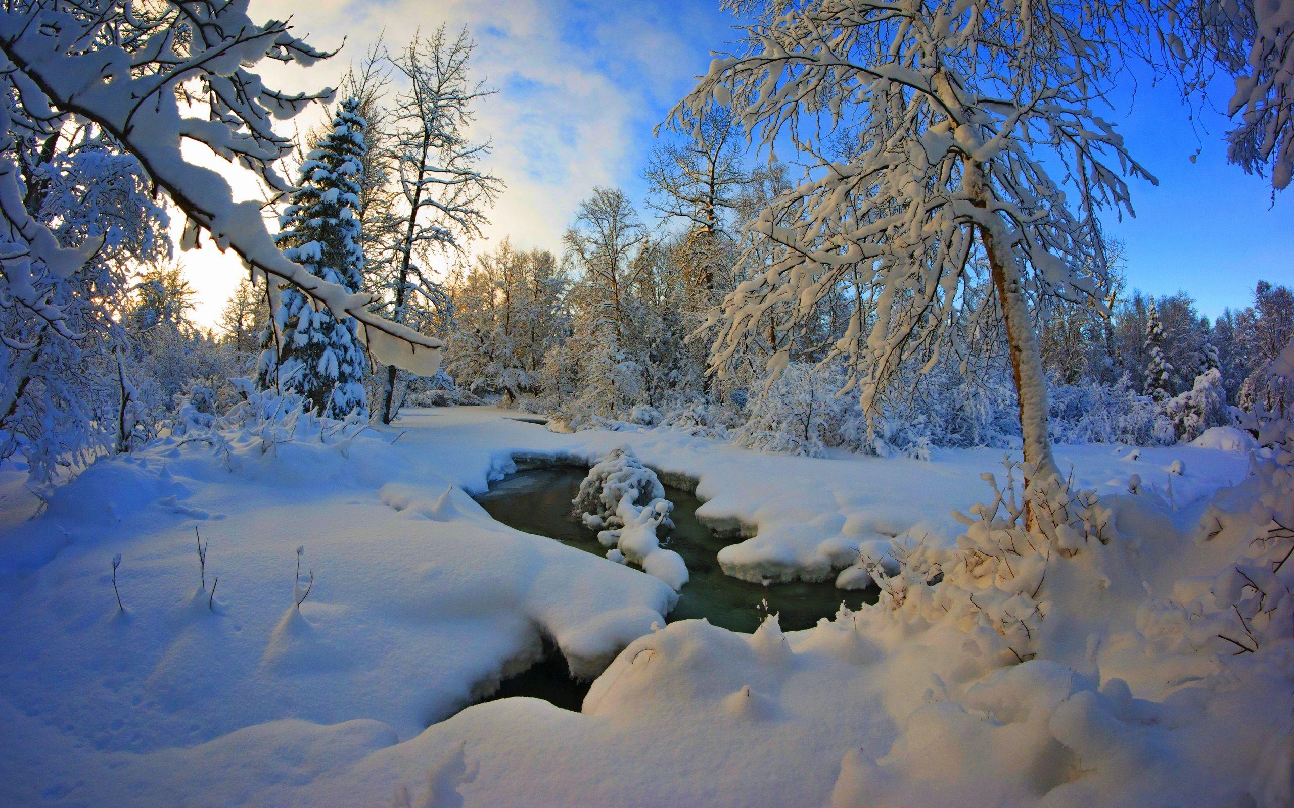 Épais hiver de neige, arbres, rivière, crépuscule Fonds d ...