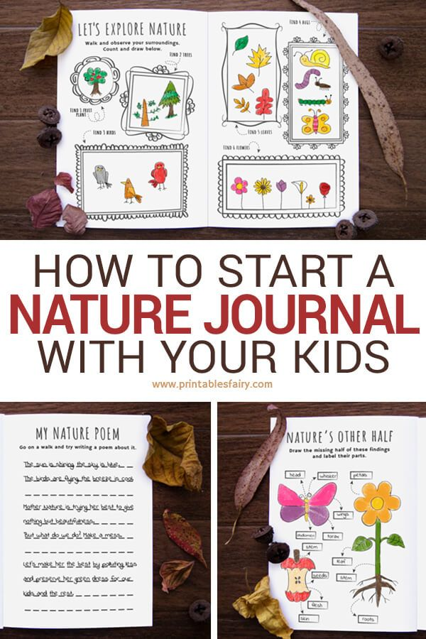 Printable Nature Journal Fun Fall Activity for Kids