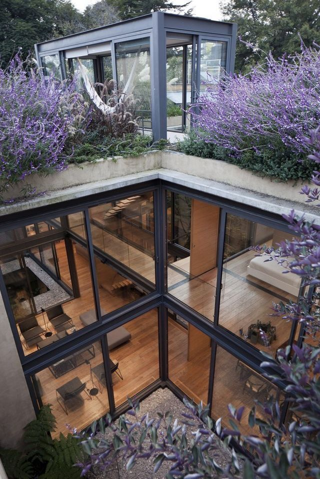 House with Four Courtyards, Mexico City by Andrés