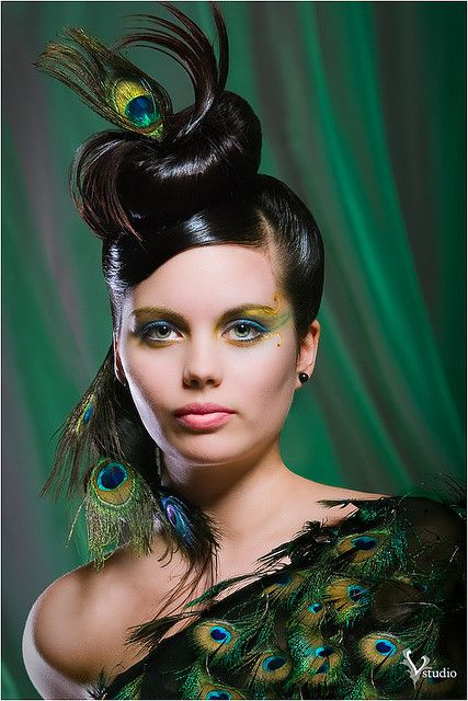 peacock fashion affair animal