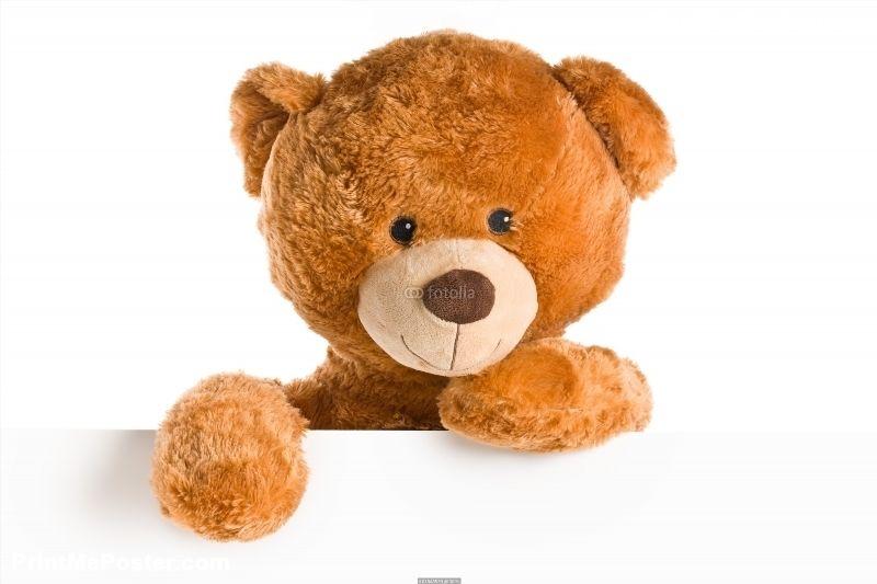 Teddy Bear Behind Whiteboard Poster Id F61845539 Big Teddy Bear Teddy Bear Nursery Teddy Bear Cartoon