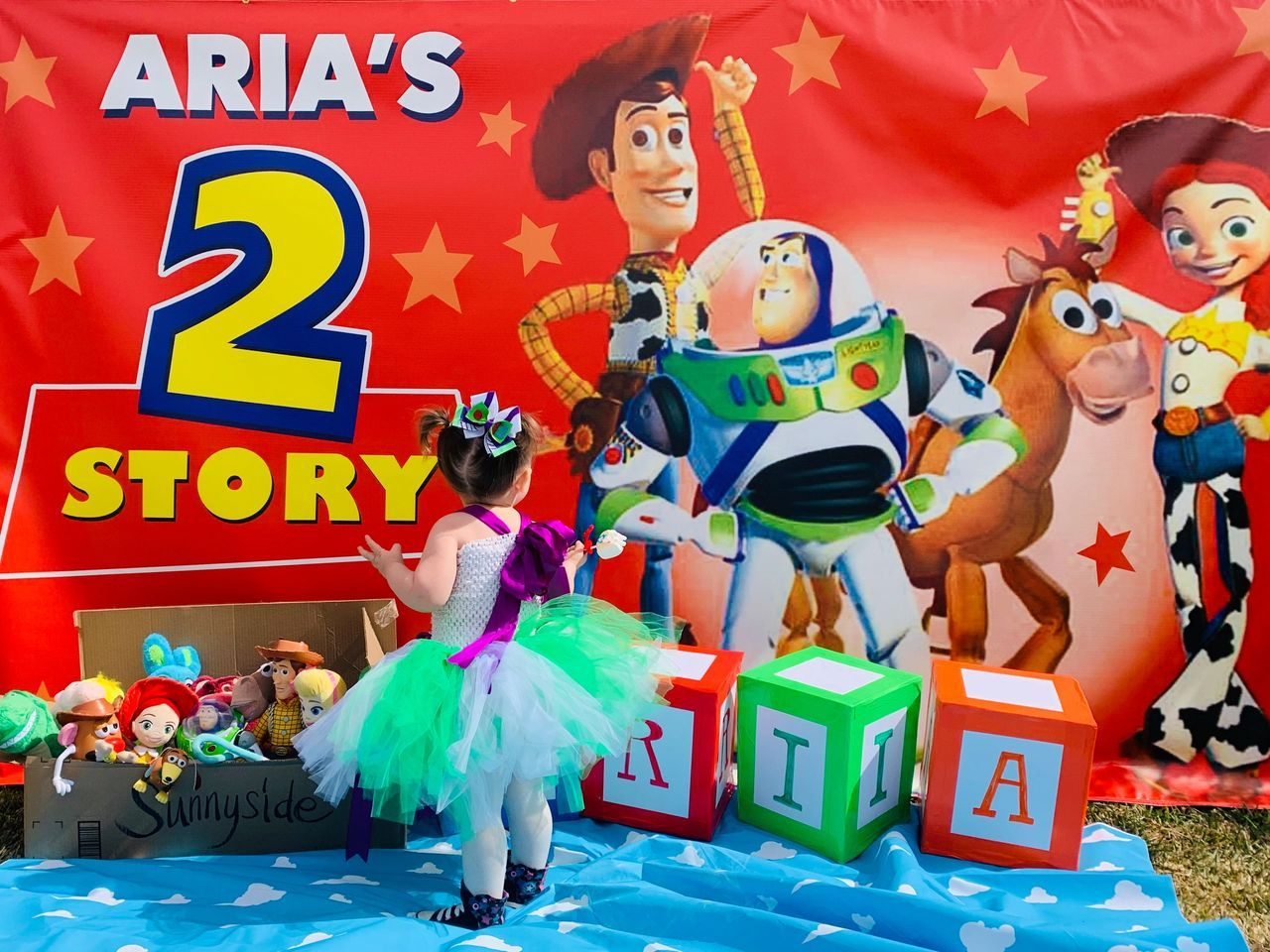 Toy Story Birthday Party Ideas In 2020 Disney Mom Toy Story Birthday Party Disney Blog