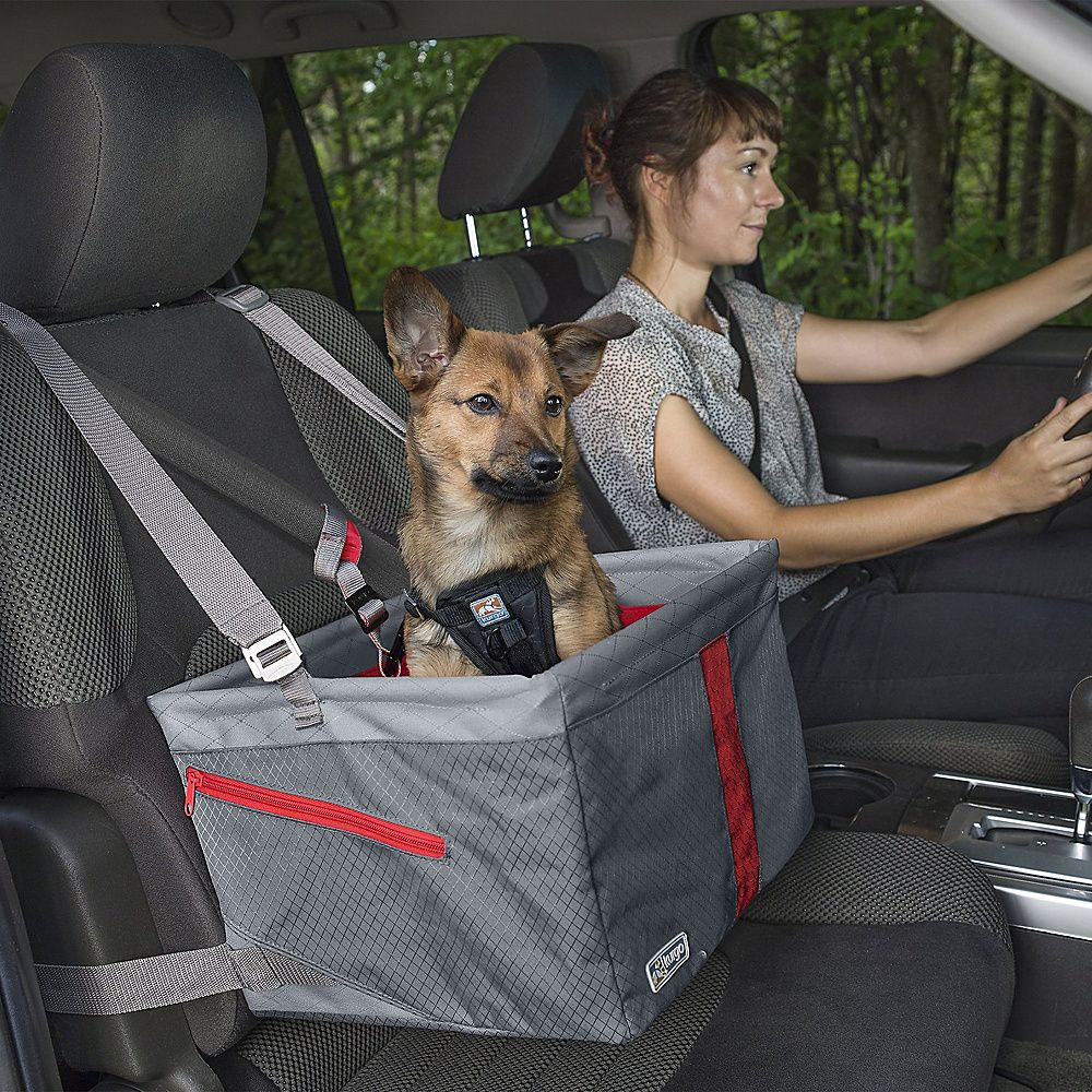 Journey Dog Booster Seat Dog car seats, Dog diapers, Pet