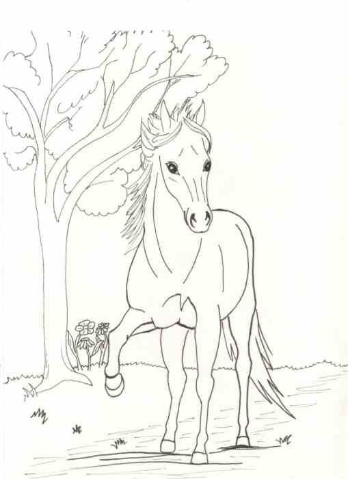 Lovas Kifestok Keptar G Portal Sketches Moose Art Line