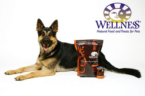 Wellness Core Godoggy Pet Storepet Food Delivery Chico