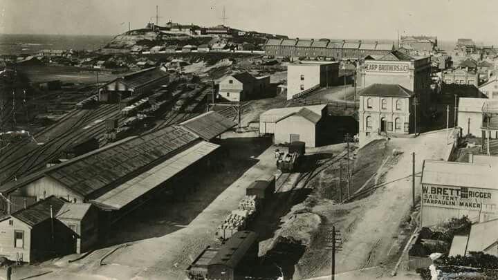 Newcastle rail line history betting roco line ohne betting tips
