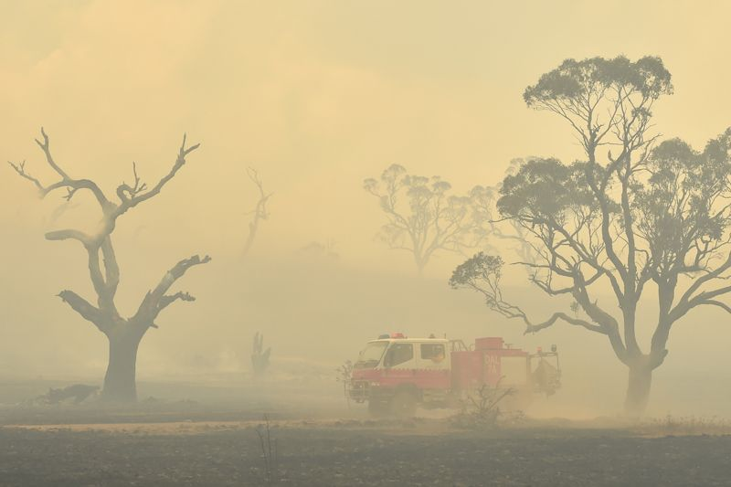 Climate change made Australia's devastating fire season 30