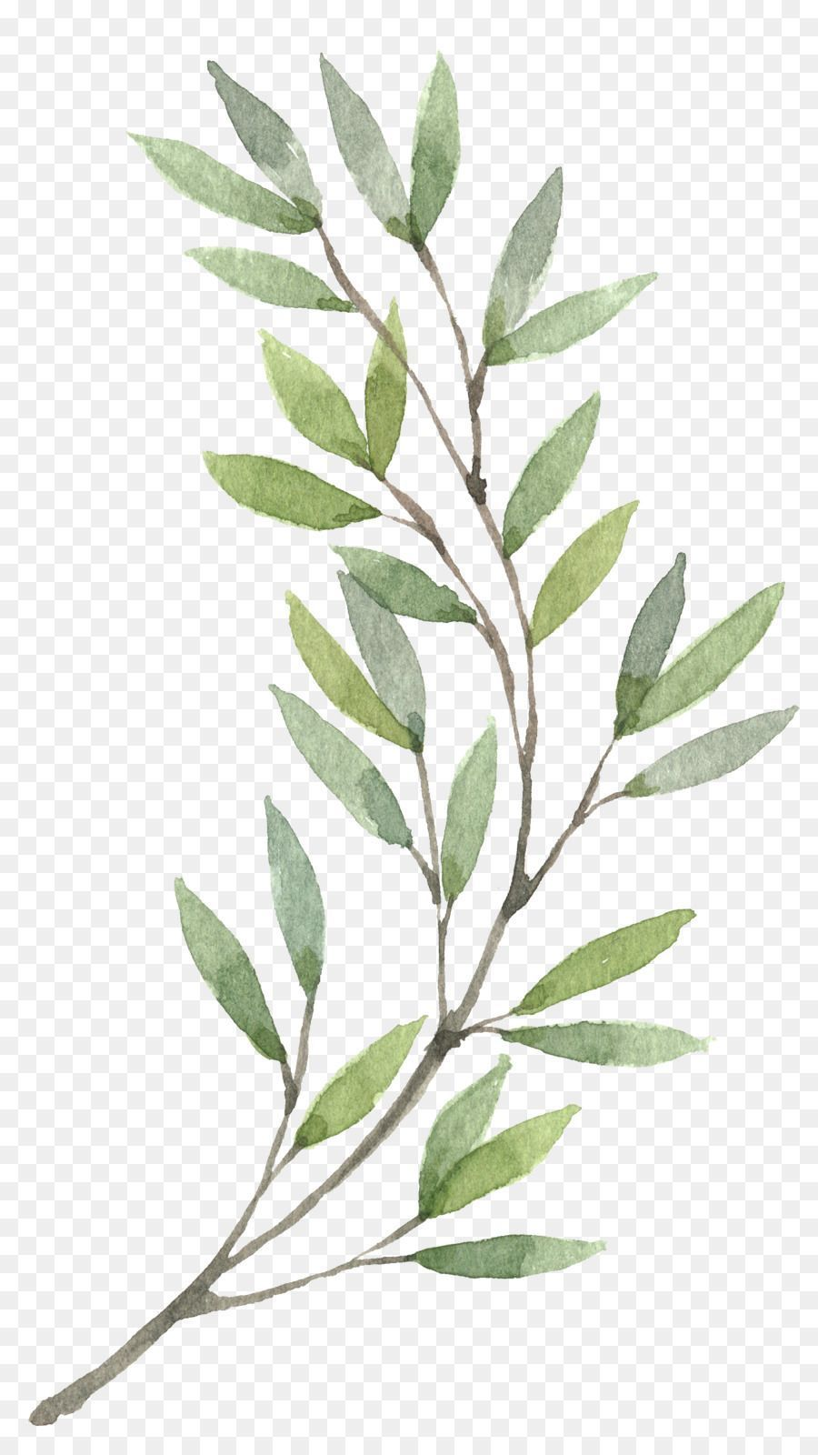 Handpainted Watercolor Painting Wreath Flower Plants Clip Artwreath Watercolor Painting Flower Clip Ar Wie Man Blumen Malt Pflanzenmalerei Illustration