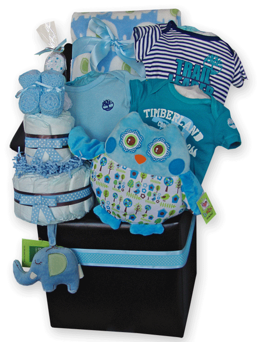 Baby Boy Gift Basket: Storage Ottoman, Diaper cake, Owl Pillow, Toronto - Baby Boy Gift Basket: Storage Ottoman, Diaper Cake, Owl Pillow