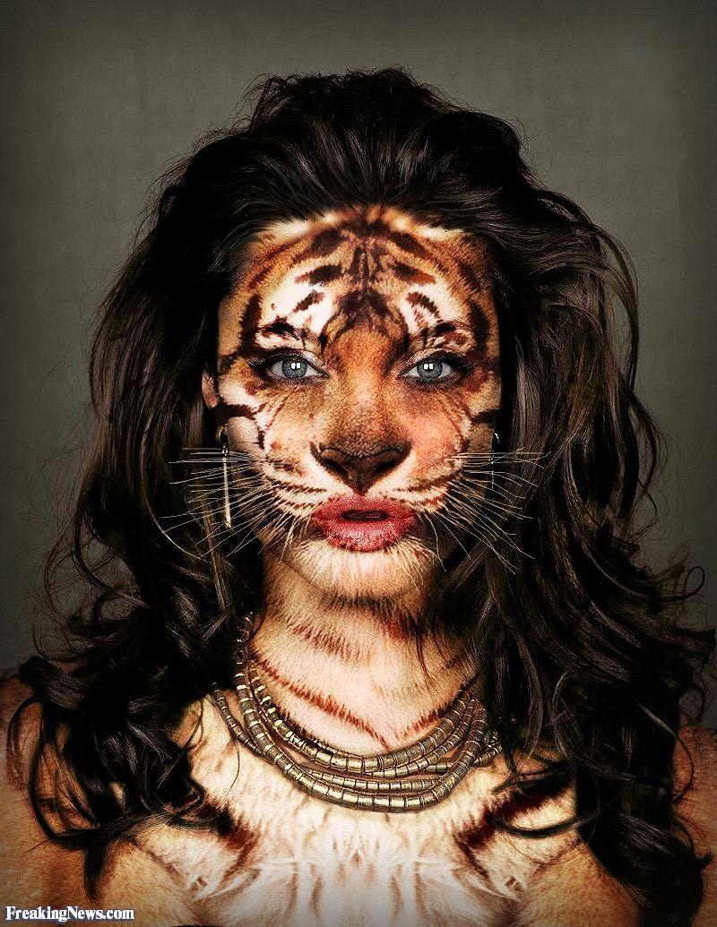 human chimeras pictures | Tiger | Frankenstein Diaries ...