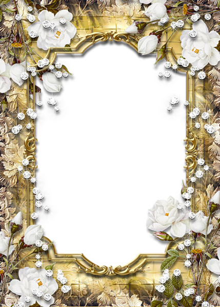 Gold Flower Border