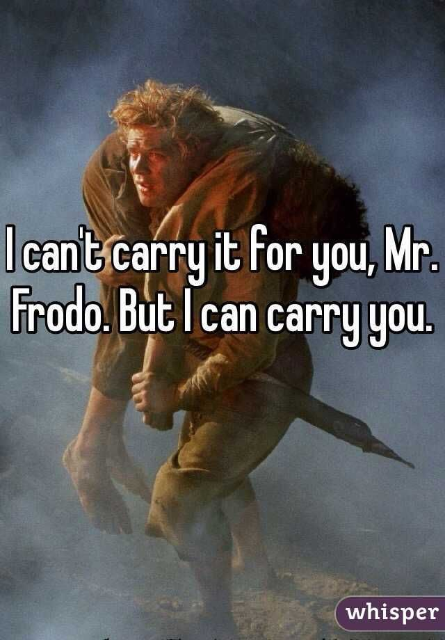I Can T Carry It For You Mr Frodo But I Can Carry You Mr I Can Frodo