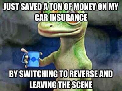 Today S Funniest Photos Car Insurance Insurance Cheap Term