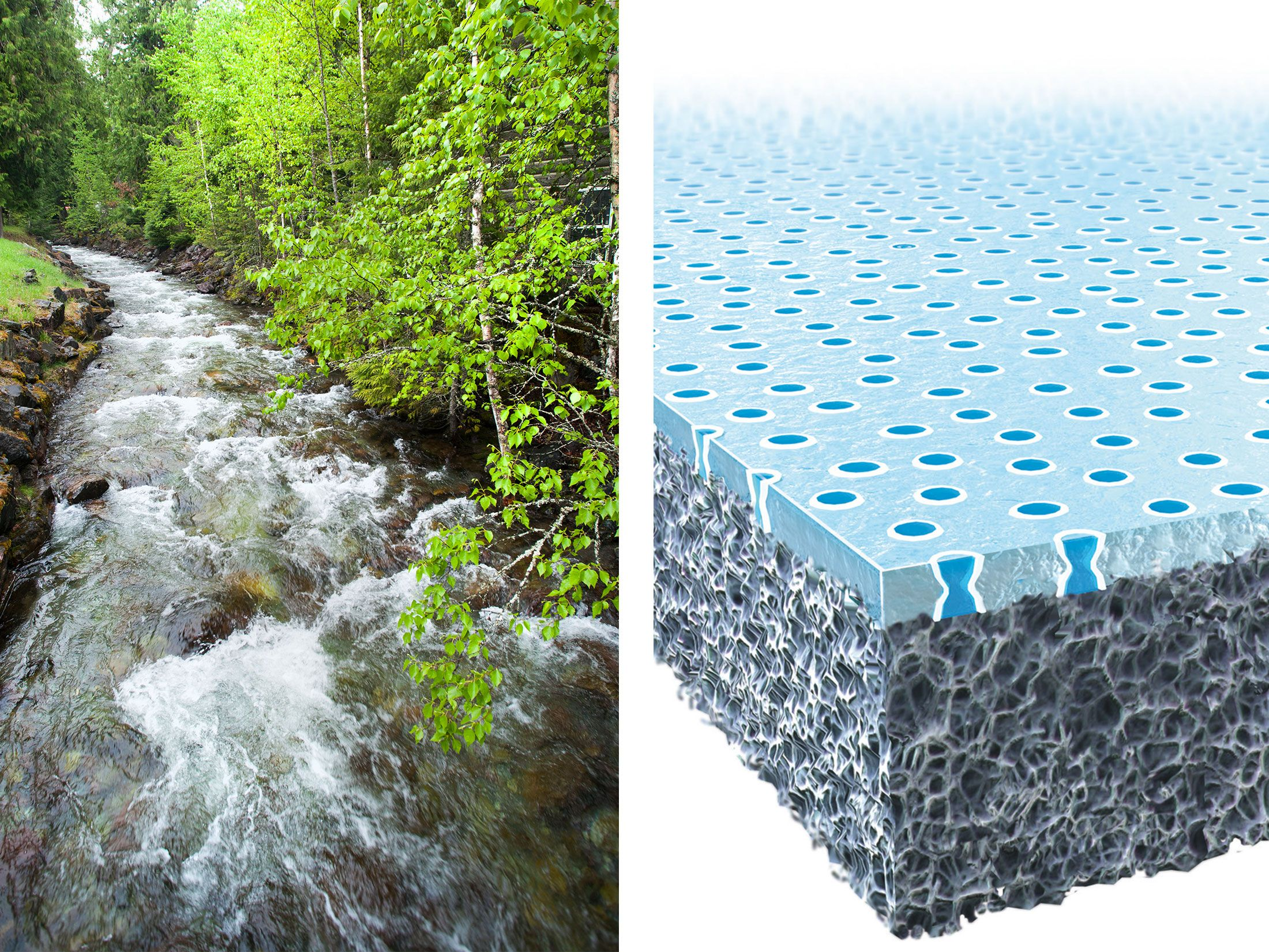 14 Smart Inventions Inspired by Nature Biomimicry